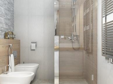 Lustrzana ścianka w zabudowie kabiny z natryskiem w małej łazience (25479)