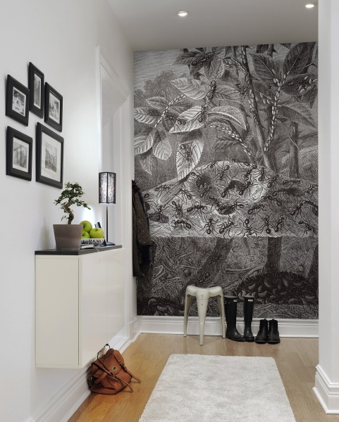dżungla w bia�oczarnej illustracji na fototapecie