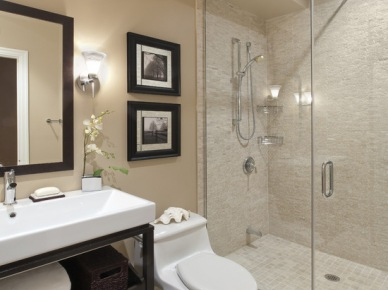 Bathroom Design, Pictures, Remodel, Decor and Ideas (121)