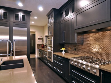 Modern Kitchen Photos Design, Pictures, Remodel, Decor and Ideas - page 2 (264)