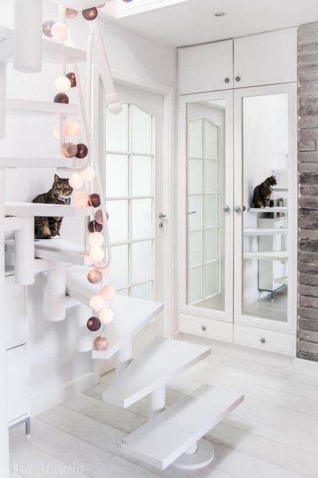 Białe Schody W Mieszkaniubiałe Schody Ozdobione Zdjęcie W