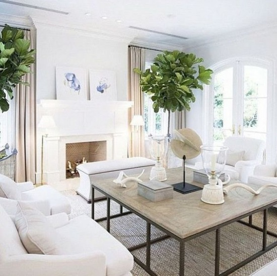 All White Living Room Pictures Photos And Images For: Duży Salon Z Kominkiem W Stylu Hampton